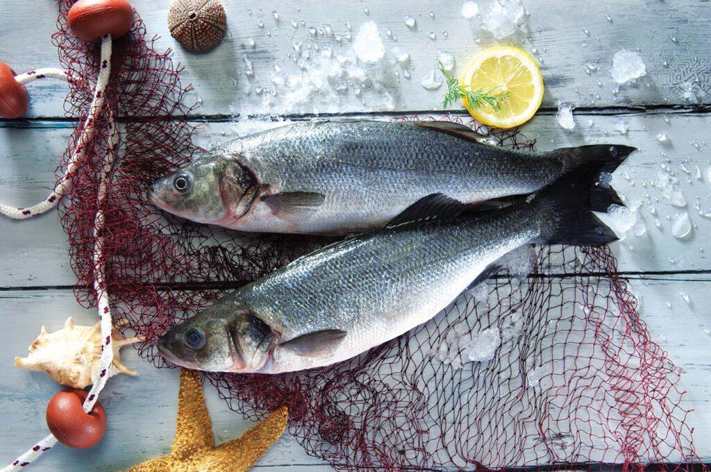 Levrek - Yunan Mutfağı, Yemekleri, İçecekleri